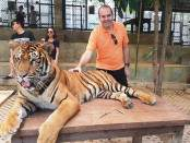 Tigres Tailandia