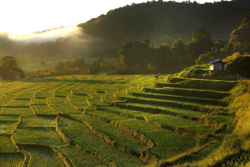 Lugares que ver en Chiang Mai