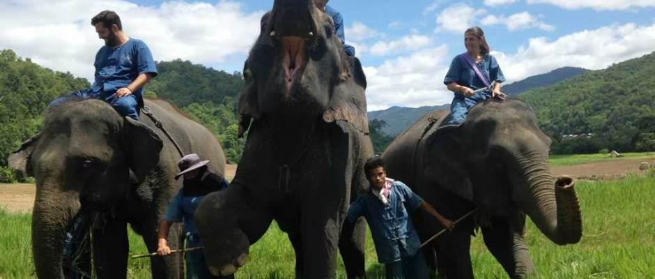 Montar en elefante sin silla