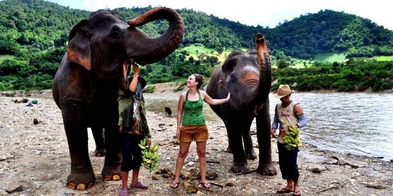 Visitar un campo de elefantes en Tailandia