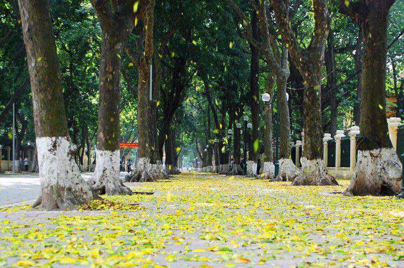 El tempo en Hanoi en Noviembre