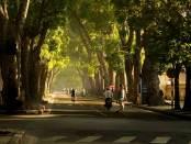 El tiempo en Vietnam en Noviembre