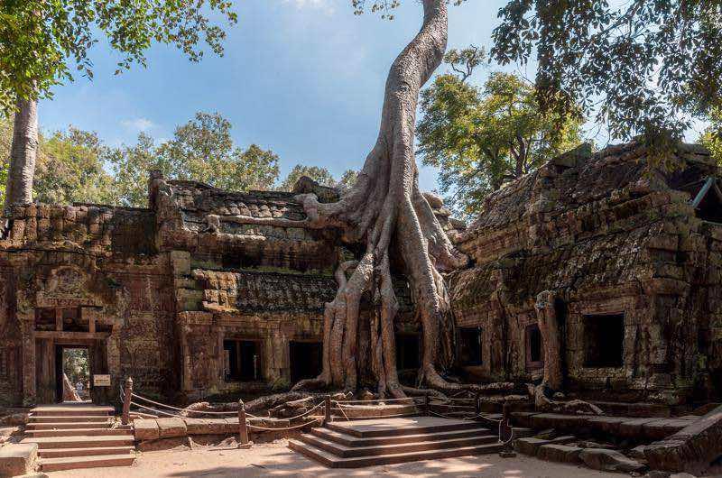 Templo de Ta Phrom en Angor