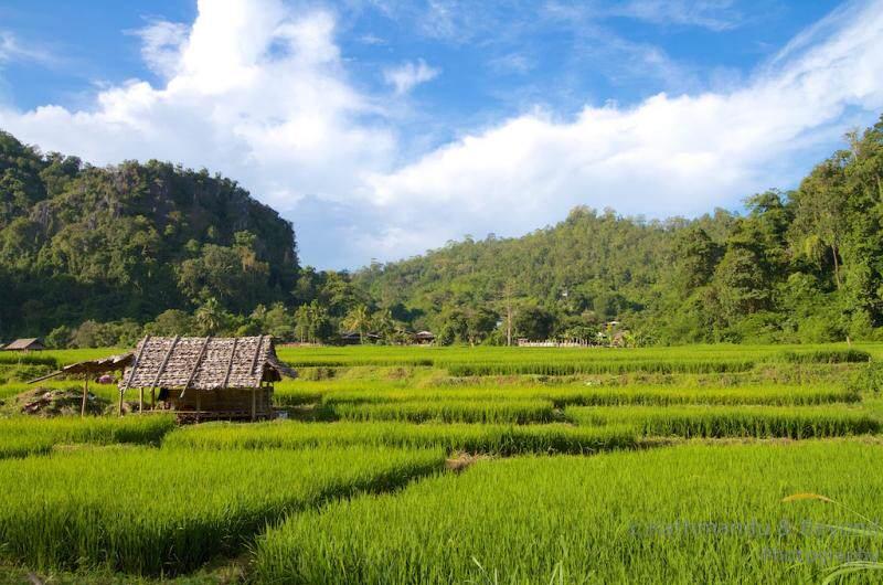 Region Norte Tailandia